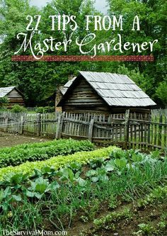 27 Tips from a Master Gardener: