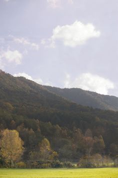 Enjoy the Great Smoky Mountains National Park from #Wyndham #Smoky #Mountains or Wyndham Vacation Resorts Great Smokies Lodge in #TN - less than an hour from the park.