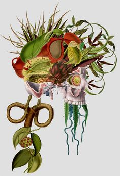 An Art That Shows What Happens When Anatomy Meets Flora And Fauna