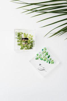 Acrylic Wedding Ring Box - Maidenhair Fern Greenery Printing An ideal showcase for your precious wedding rings! Maidenhair Fern, Lucky Colour, Wedding Ring Box, Color Ring, Acrylic Colors, Ferns, Perfect Wedding, Favorite Color, Greenery