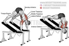 Exercise: Elevated pike press. Target muscle: Anterior Deltoid. Synergists: Upper Pectoralis Major, Triceps Brachii, Lateral Deltoid, Middle and Lower Trapezius, Serratus Anterior. Dynamic stabilizer: Biceps Brachii (short head only). Mechanics: Compound. Force: Push. Back Exercises, Shoulder Exercises, Best Shoulder Workout, Weight Training Workouts, Workout Guide, Biceps, Gym, Muscles, Target