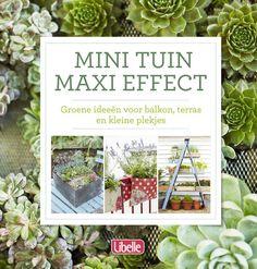 Mini tuin maxi effect