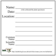 how to make an herbarium label | Step 7: Labelling your plants | ASU - Ask A Biologist