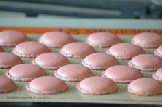 Macarons thermomix