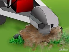 Image intitulée Kill a Tree Stump Step 12