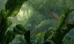 Disney's Tarzan Concept of Background | disney crossover images Empty Backdrop from Tarzan HD wallpaper and ...