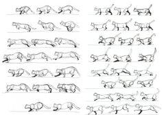 Paula Davey, Animation Module: Cat Movement