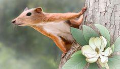Los primeros primates ya vivían en los árboles:  Un fósil de tobillo de 'Purgatorius' resuelve el misterio de por dónde se movían [Ilustración de un 'Purgatorius'. Imagen: Patrick Lynch. Fuente: YaleNews.]