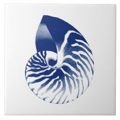 Nautilus Shell Ceramic Tiles | Zazzle