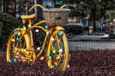 christmas lights on a bike - Google Search