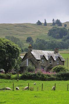 Near Aberfeldy, Scotland