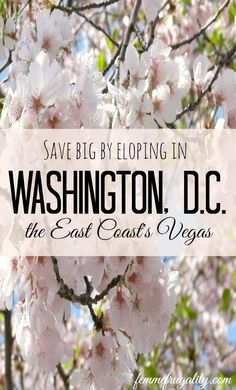 Eloping in DC is far easier than hopping on a plane to Vegas for East coast residents. Get your marriage license the same day you apply. Marriage License, Marriage Advice, Ways To Save Money, Money Saving Tips, Money Tips, Budget Wedding, Destination Wedding, Wedding Reception, Nontraditional Wedding