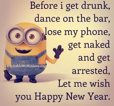Before I get drunk, dance on the bar, lose my phone, get naked and get arrested, let me wish you Happy New Year! - minion