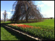 White flower farm litchfield ct litchfieldhills white flower farm litchfield ct mightylinksfo