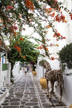 Our next stop on the cruise itinerary was Mykonos, Greece! We were supposed to tender in (take a little boat from the cruise ship to Mykon...