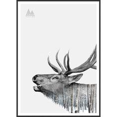 'Deer' Framed Graphic Art