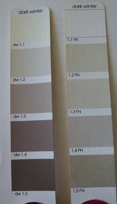 DW Corporate on the Left Deep Winter Palette, Deep Winter Colors, Deep Autumn, Clear Winter, Winter Light, Dark Winter, Winter Typ, Pear Body, Seasonal Color Analysis