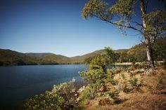 Lake William Hovell Fish Camp, Country Girls, Fishing, Camping, River, Places, Outdoor, Campsite, Outdoors