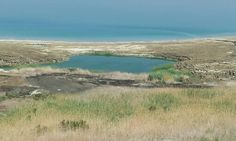 Fresh Water and Mud Pools at The Dead Sea