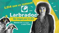 Isis et l'équipe parisienne de #L214 en action, dans un reportage de @larbradoc  https://www.youtube.com/watch?v=lsEiufKFX6E&feature=youtu.be …