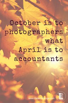 October is to photographers what April is to accountants - a funny photography quote, and so true! #quote