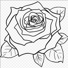 Delineate Your Lips rose drawing에 대한 이미지 검색결과 - How to draw lips correctly? The first thing to keep in mind is the shape of your lips: if they are thin or thick and if you have the M (or heart) pronounced or barely suggested. Flower Step By Step, Step By Step Drawing, Plant Drawing, Painting & Drawing, Drawing Drawing, Drawing Flowers, Flower Drawings, Realistic Rose Drawing, Drawing Of A Rose