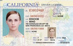 fake driving licence template - california drivers license template google search mine