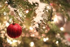 Mockingbird Cottage: Homemade Christmas Tree Flocking