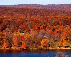 Harriman State Park New York | Foliage at Lake Welch, Harriman State Park, New York