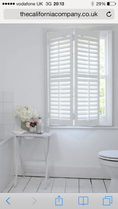 White window shutters... Better then blinds, and protect screens from pets.