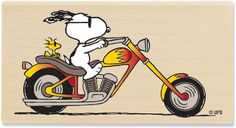 Snoopy's Chopper.