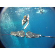 Subwing ⇒ Try the New Towable Underwater Watersport Board Sprint Triathlon, Triathlon Training, Swimming Motivation, Underwater Life, Deep Blue Sea, Sailing, World, Mindset, Hobbies