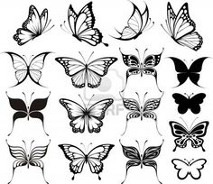 set of butterflies silhouettes isolated on white background Stock Photo