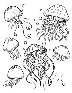 Printable jellyfish coloring page. Free PDF download at http://coloringcafe.com/coloring-pages/jellyfish/
