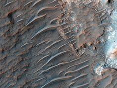 火星、風が作る砂の波