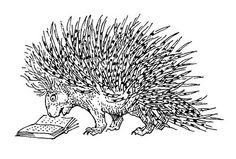 over lezers ,boeken ,letters en cijfers: lezen bij peter vos