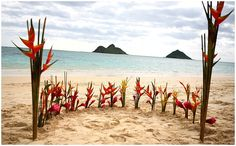 This is a very cool idea and use of flowers for a beach ceremony in Hawaii.