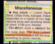 24 Hilarious News Stories