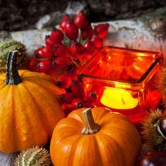 Thanksgiving, Pumpkin, Vegetables, Artist, Food, Decor, Autumn, Decoration, Buttercup Squash