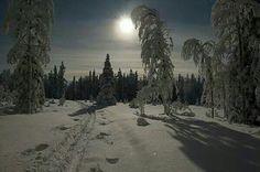 Norrbotten Sweden