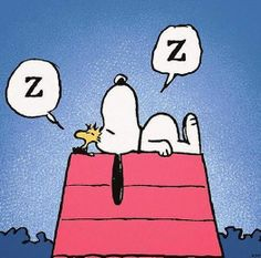 Snoopy and Woodstock Zzz