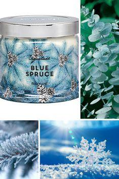 PartyLite Candles Fragrances Winter Signature Scents - Blue Spruce