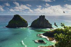 Najzachovalejší ostrov v Brazílii je skutočnou svätyňou morských korytnačiek a delfínov. Iba 460 turistov môže denne navštíviť miesto, a to nielen na to, aby si užil svoju rajskú prírodu, ale aj na potápanie a surfovanie.