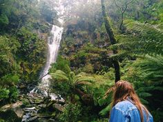 Sometimes the greatest finds are in our own backyards!  Erskine Falls   Lorne VIC Australia  #lorne #waterfalls #greatoceanroad #geelong #victoria #australia by _buildingmywings