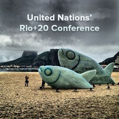 Amazing fish sculptures made from recycled bottles for the UN's Rio+20 Conference