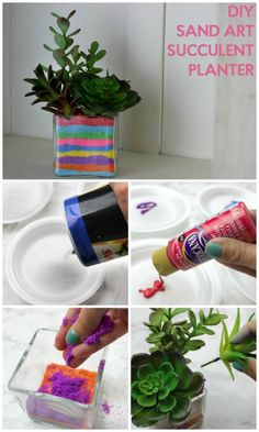 How to make your own succulent sand art terrarium terraria plants diy sand art succulent planter solutioingenieria Image collections