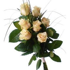 Артикул: 035-111                       Расскажите о нас друзьям: Состав букета: 7 роз кремового цвета, декоративная зелень, оформление Размер: Высота букета 60 см Роза: Выращенная в Украине http://rose.org.ua/bukety-iz-roz/1039--toplenoe-moloko.html #букеты #букетроз #доставкацветов #RoseLife #flowers #SendFlowers #купитьрозы #заказатьрозы   #розыпоштучно #доставкацветовкиев #доставкацветовукраина #срочнаядоставка #заказатьрозыкиев