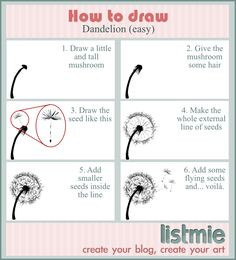 How to draw: dandelion