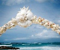 Shells of different sizes and colors are interspersed with white carnations and pearls for a romantic seaside ceremony.