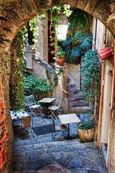 Lush Courtyard, Provence, France ~